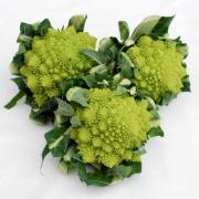 broccolo romano 2
