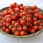 cesto-pomodorini(1)