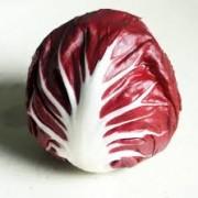 radicchio rosso1