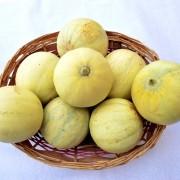 cesto-meloni-lisci