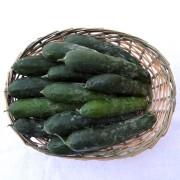 cetrioli-cesto
