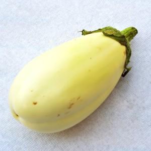 melanzana-bianca