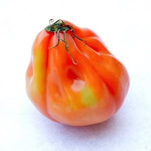 pomodoro-cuore-di-bue