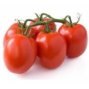 pomodori-piccadilly