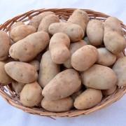 cesto-patate