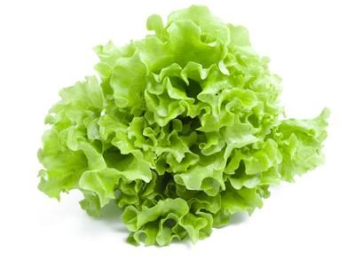insalata-gentile