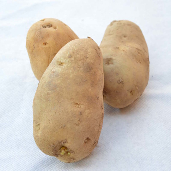 tre-patate-gialle
