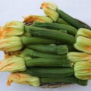 cesto-zucchine