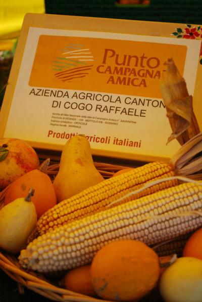 vendita diretta prodotti agricoli italiani banco campagna amica Cantonà