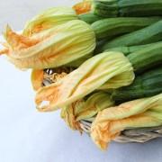 zucchine-dettaglio